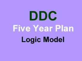 DDC Five Year Plan Logic Model