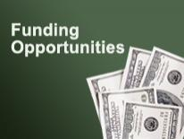 """Graphic of dollar bills with text """"Funding Opportunities"""""""